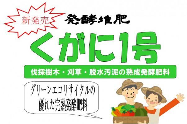 okinawa_silver_jinzai_kugani_1_gou